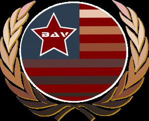 Black American Veteran (B.A.V.) Nation