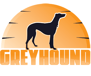 Greyhound Giveaways